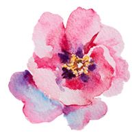 Dot Kids Greytown Logo just the flower